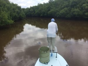 fly fishing for tarpon in the florida keys