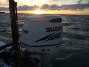 Suzuki Sunset